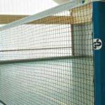 Fileu competitie badminton